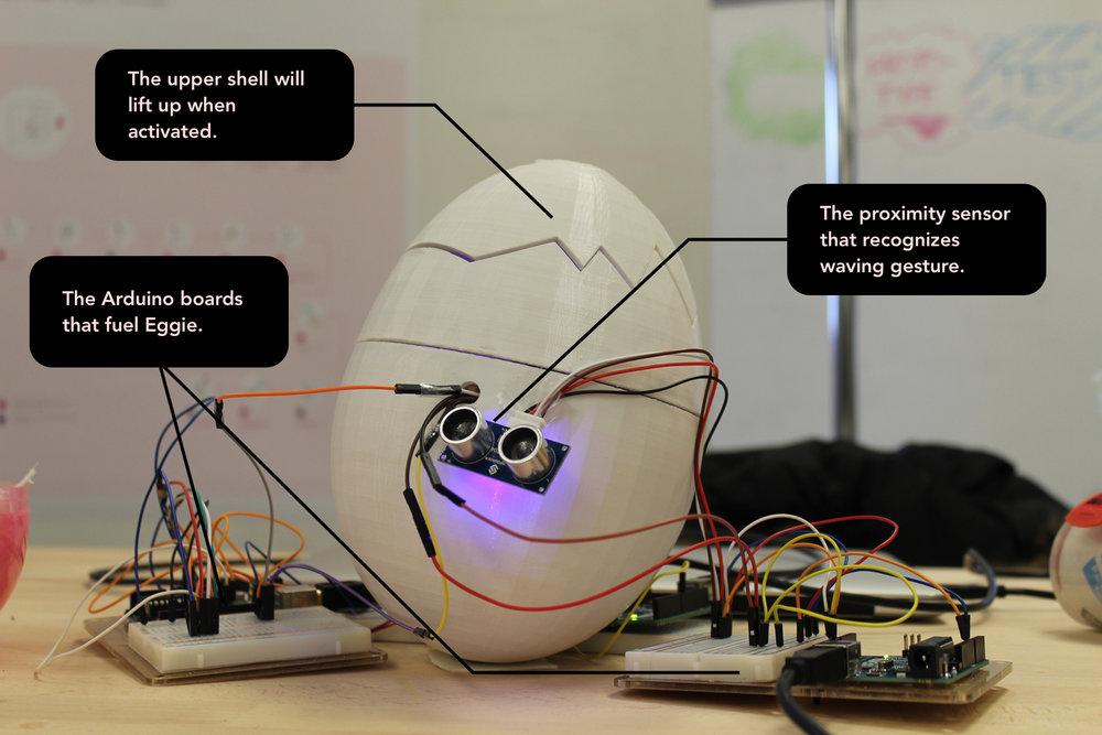 Eggie-presentation.jpg