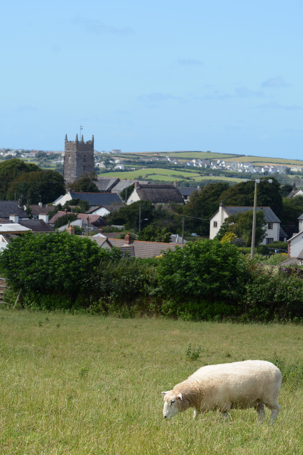 View from Wooldown, towards nearby village of Marhamchurch