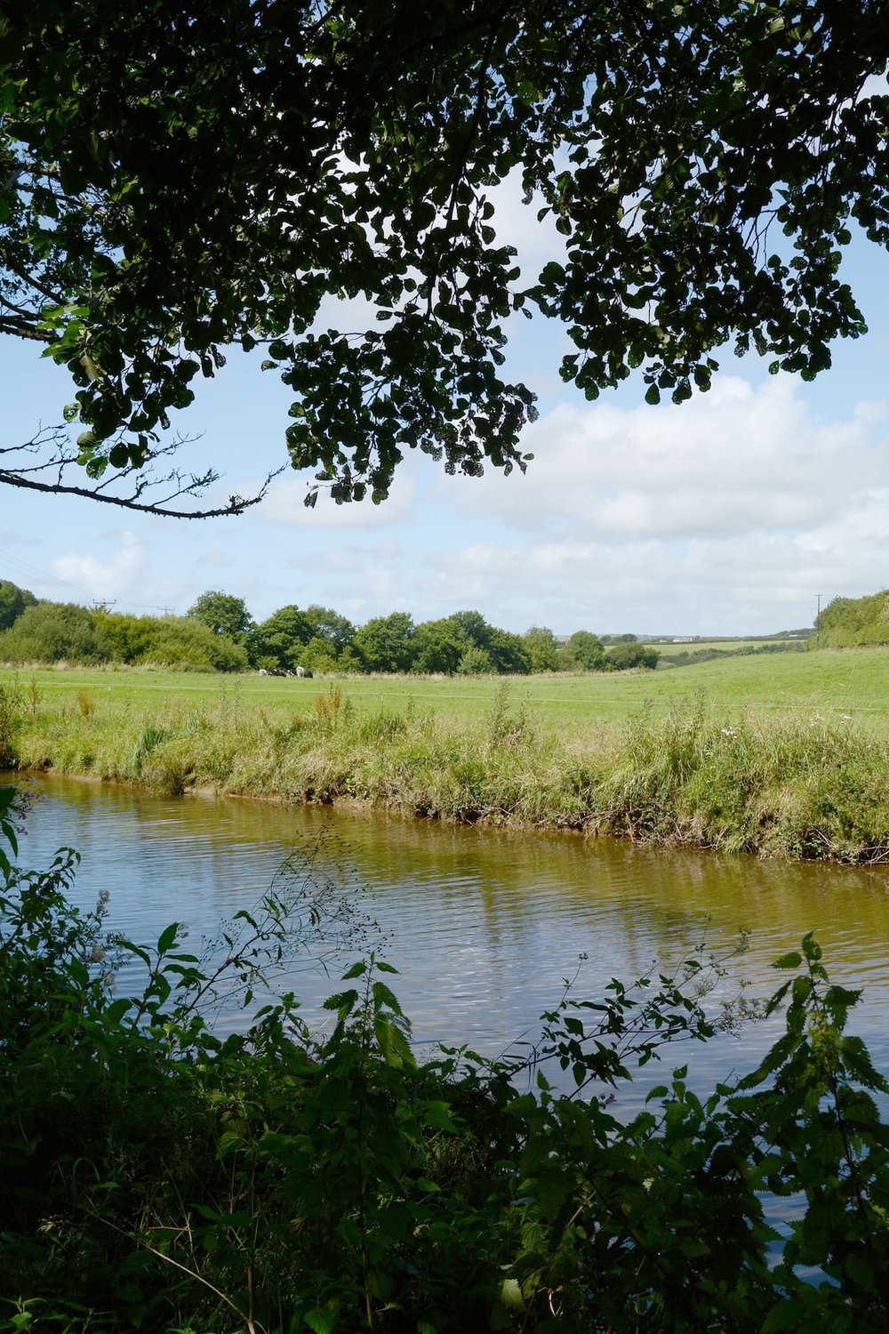Marhamchurch to Bude Canal footpath