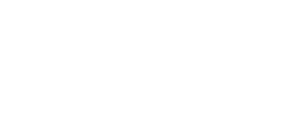Pace and Pattern 2018 logo image white (1).png