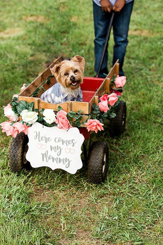 dogs in wedding blog 16.jpg