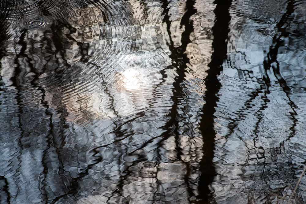 Reflections and water-strider ripples