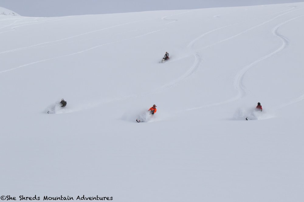 Photo taken by Janice Mcwilliam Feb 12 in Pemberton BC - riders: Shelagh, Chris, Owen and April