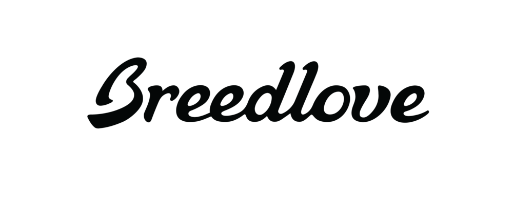 Breedlove-logo-final.png