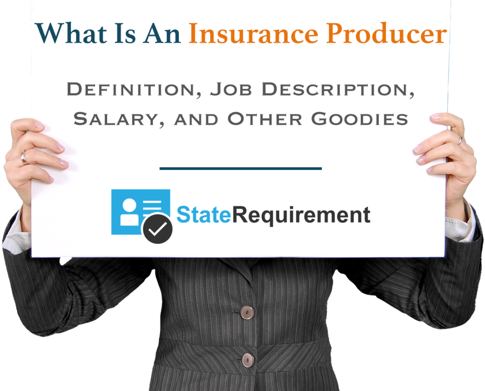 what is an insurance producer definition job description more staterequirement