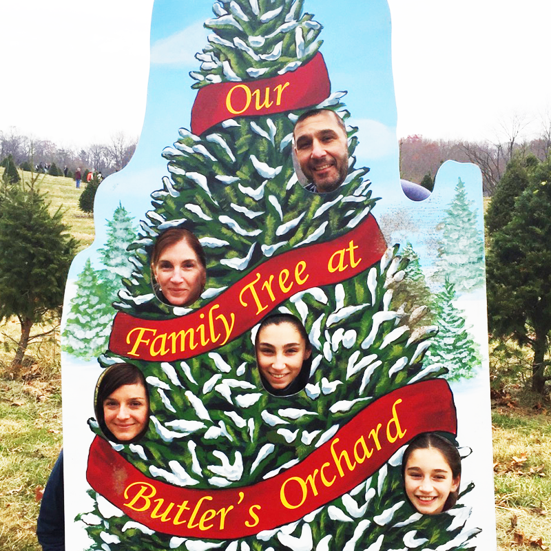 trad-tree-orchard-pierces.png