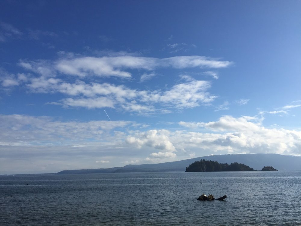 The beautiful view from the Haida Heritage Site
