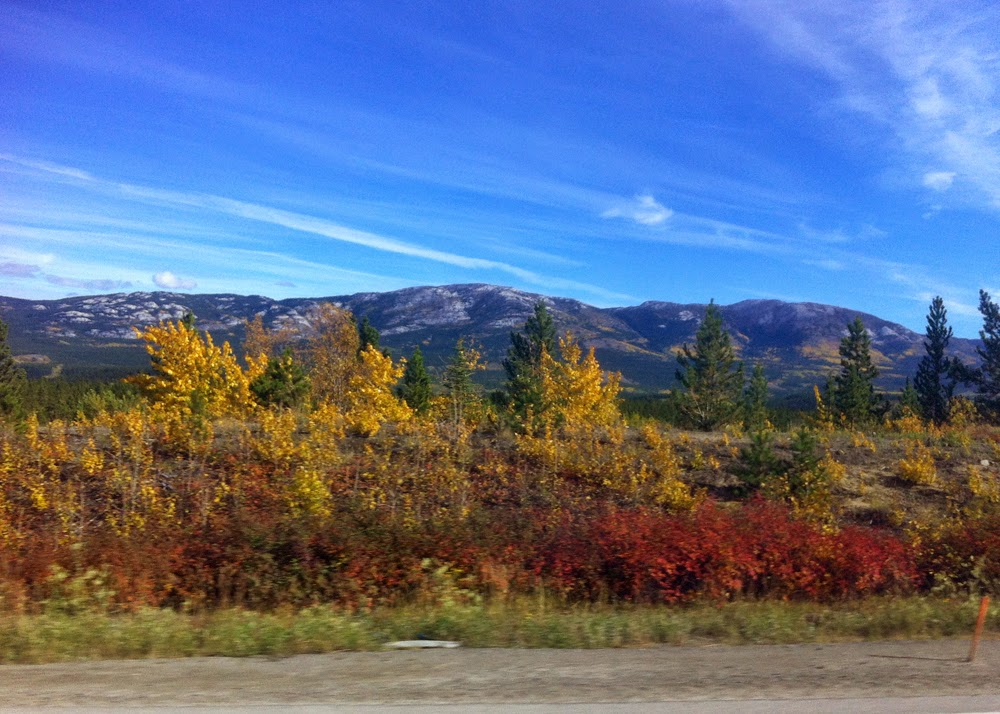 The colours in Whitehorse are incredible!