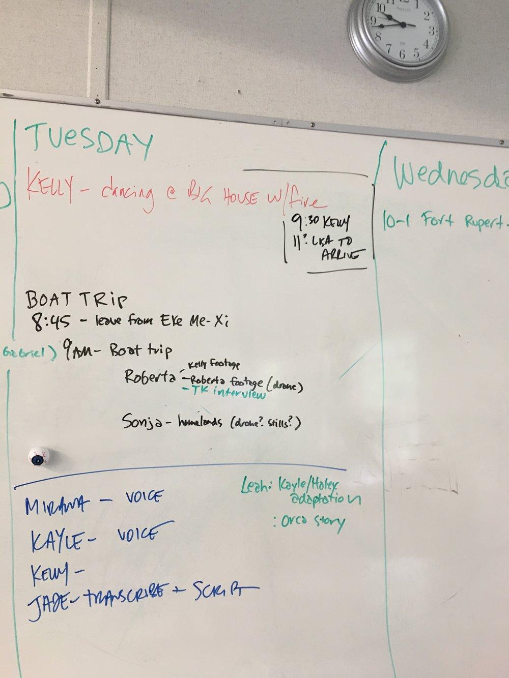 Tuesday plan