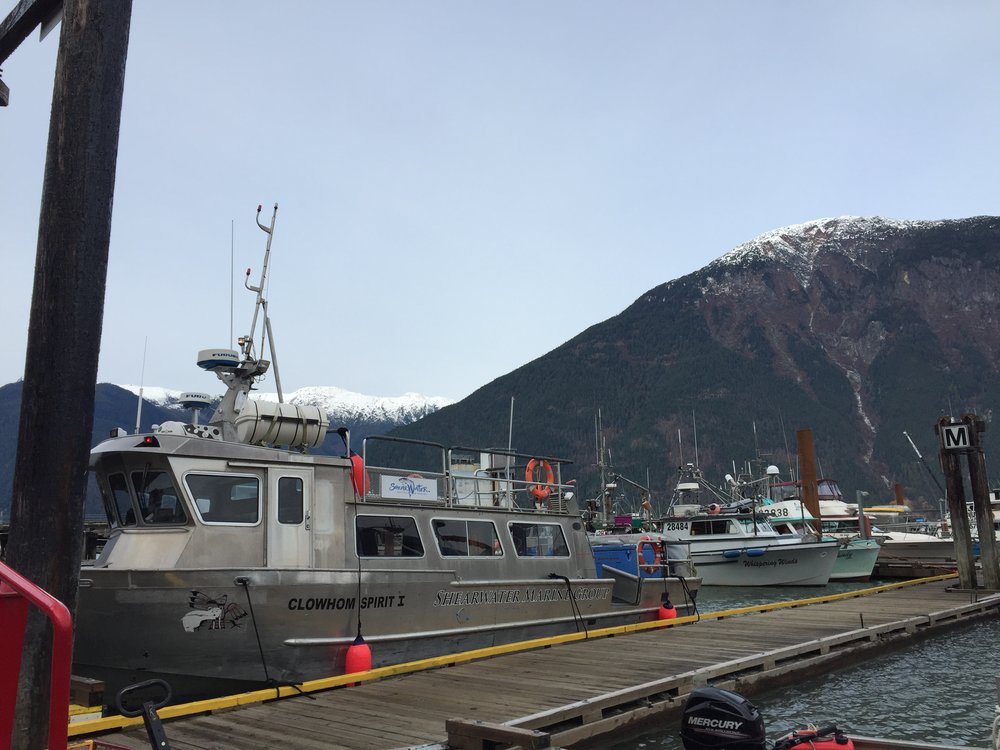 We arrive in Bella Coola!