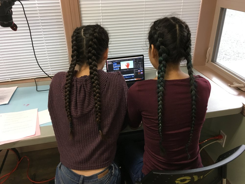 Twin Braid Powers UNITE!  (Astrid & Bella)