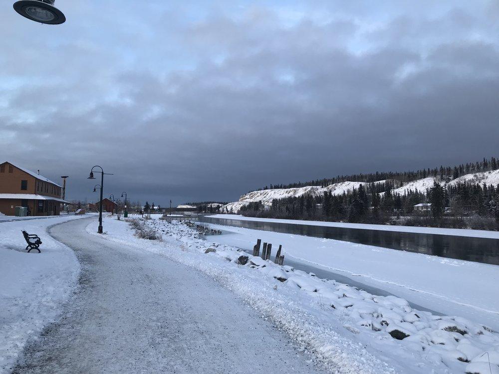 A nice walk along the Yukon RIver