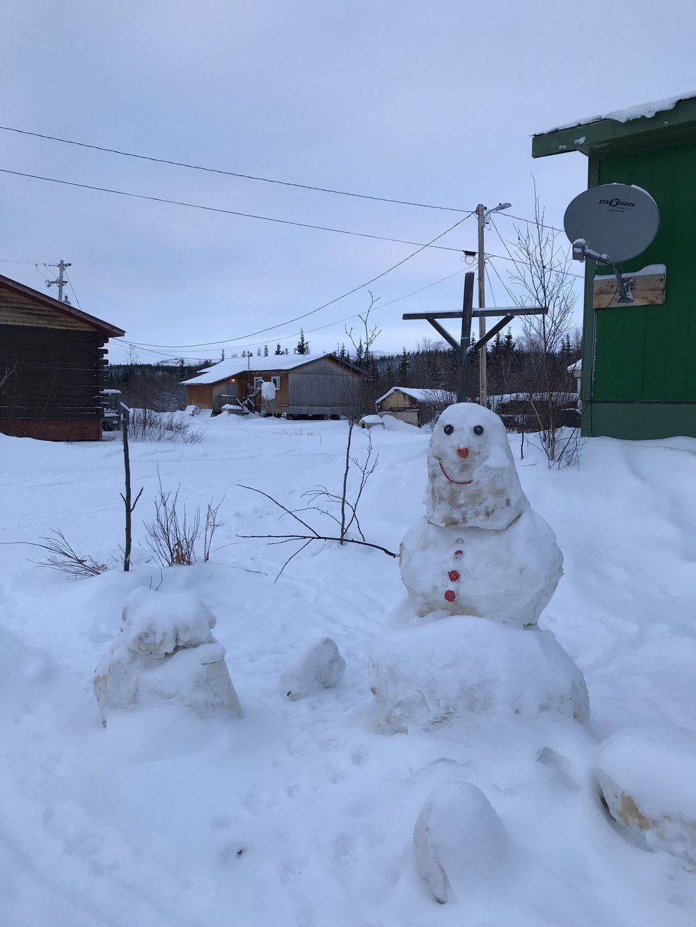 Snow peeps