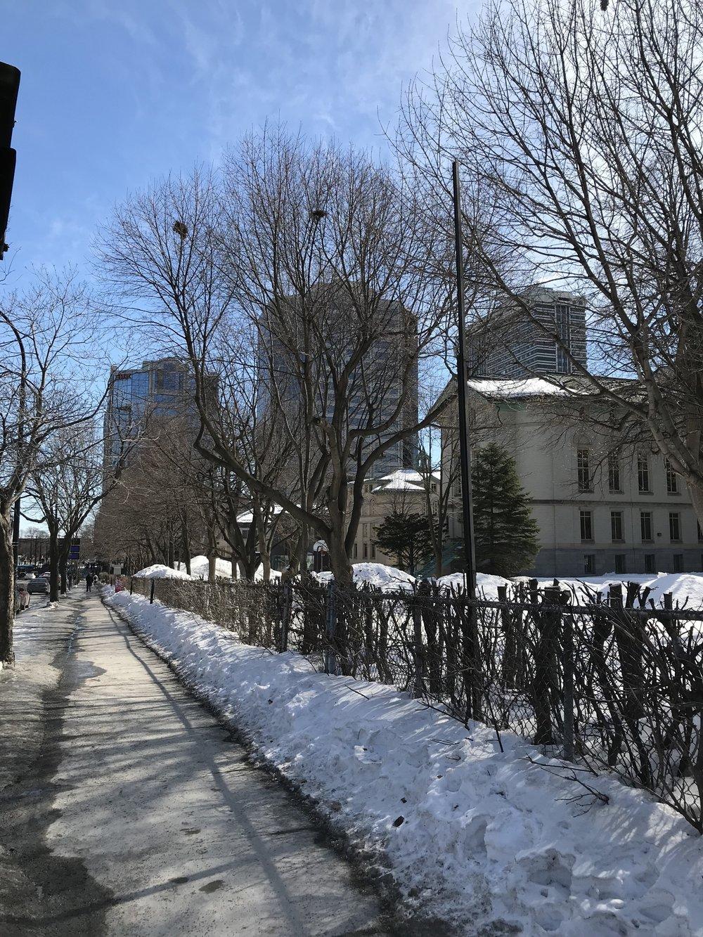 Dawson College sidewalk