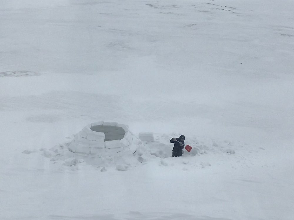 Mark keeps working on the igloo!