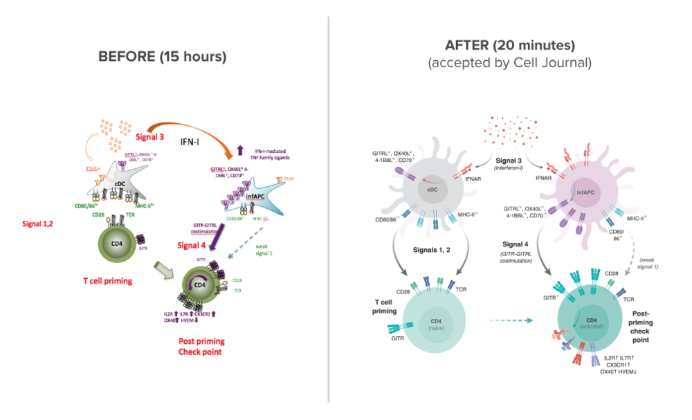 Cell-Immunity_before-after_Nov2017.png