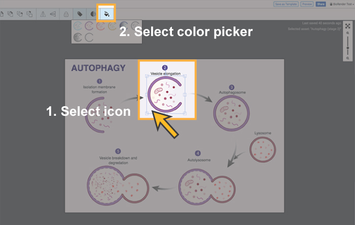 FAQs-How-to-ALL-color1.jpg