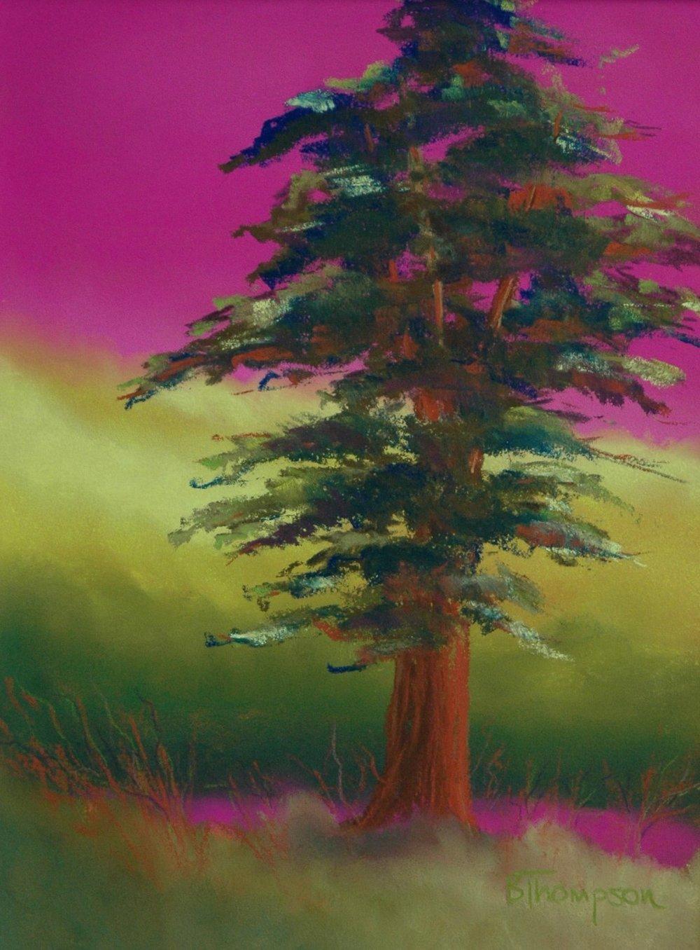 Cypress Fantasy