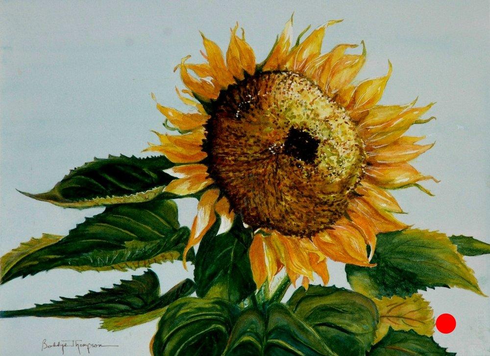 Sun Seeker      SOLD.JPG