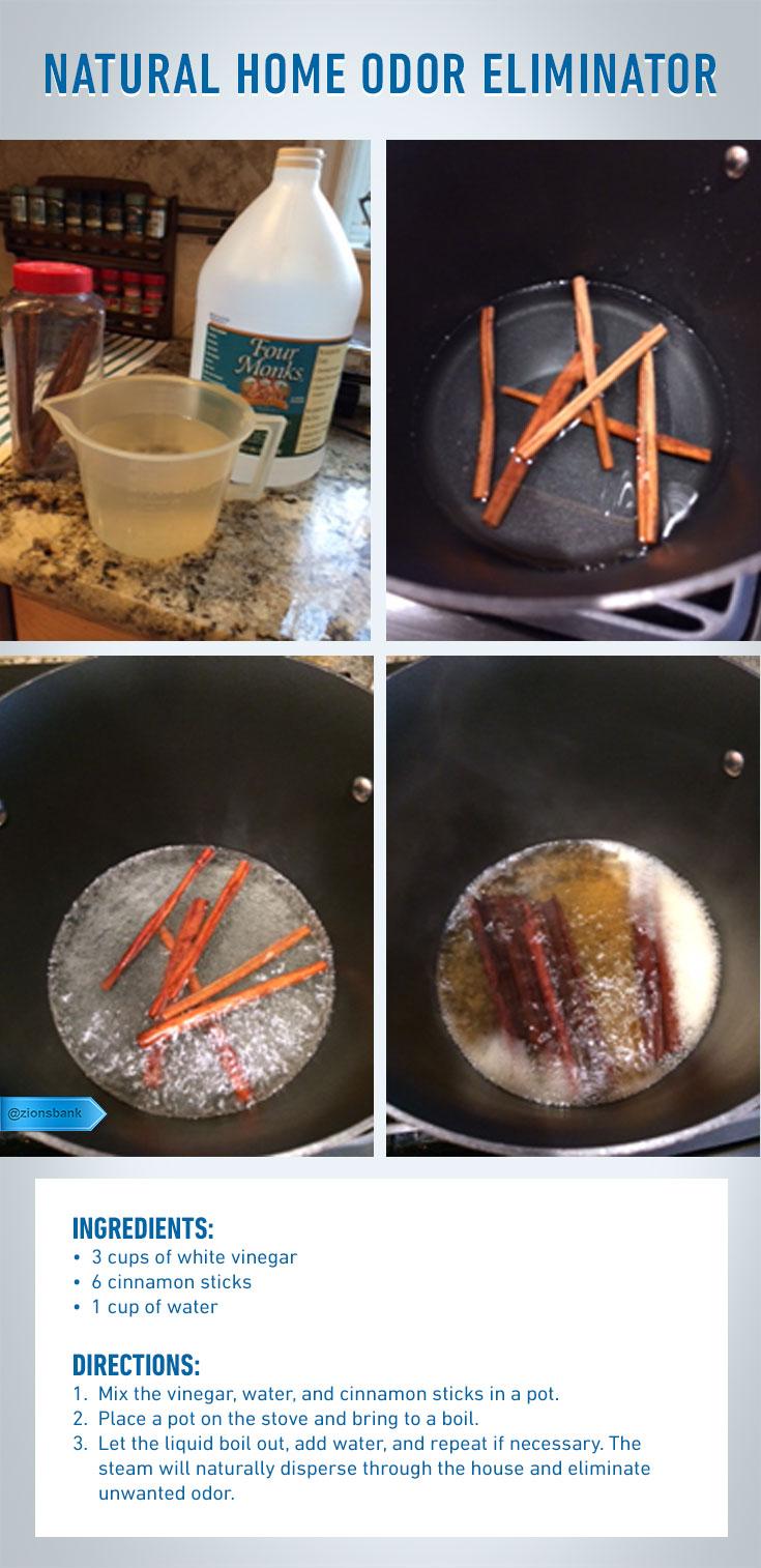 1. Make a Cinnamon and Vinegar Boil
