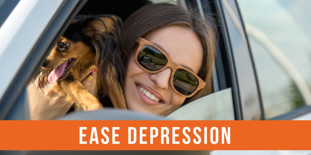 pets ease depression