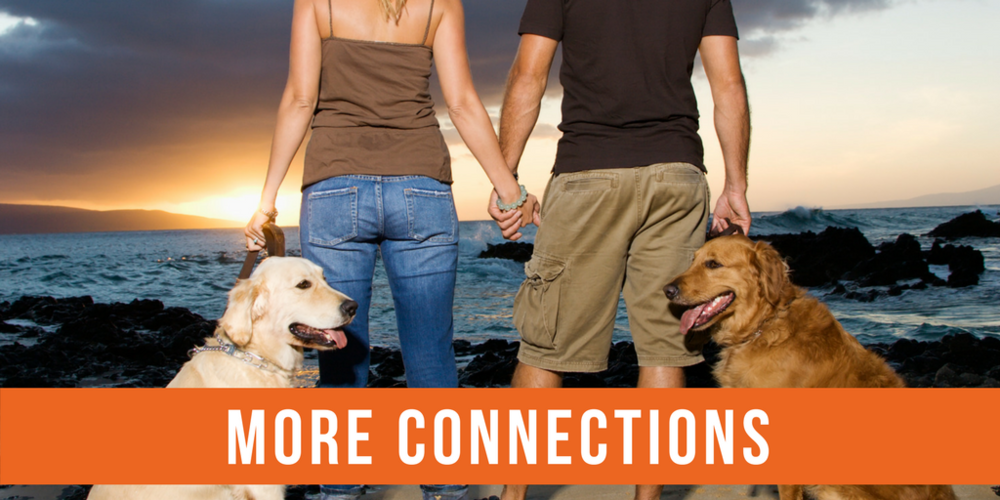 pets help us make more connections