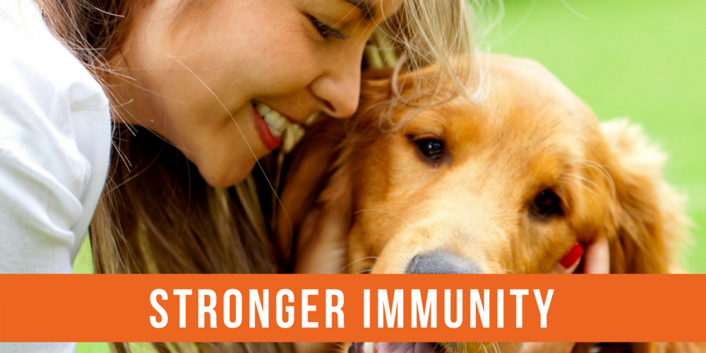 build a strong immune system in one step