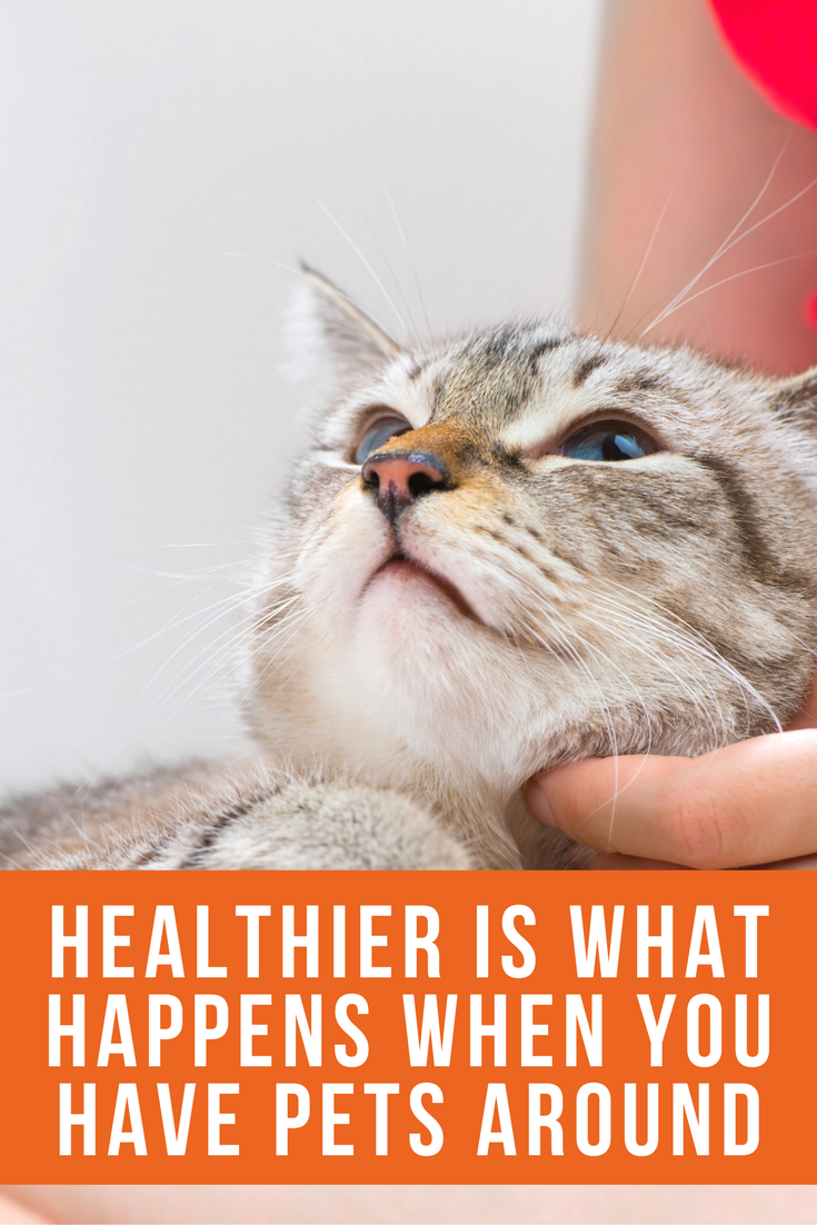 get healthy with pets in your life