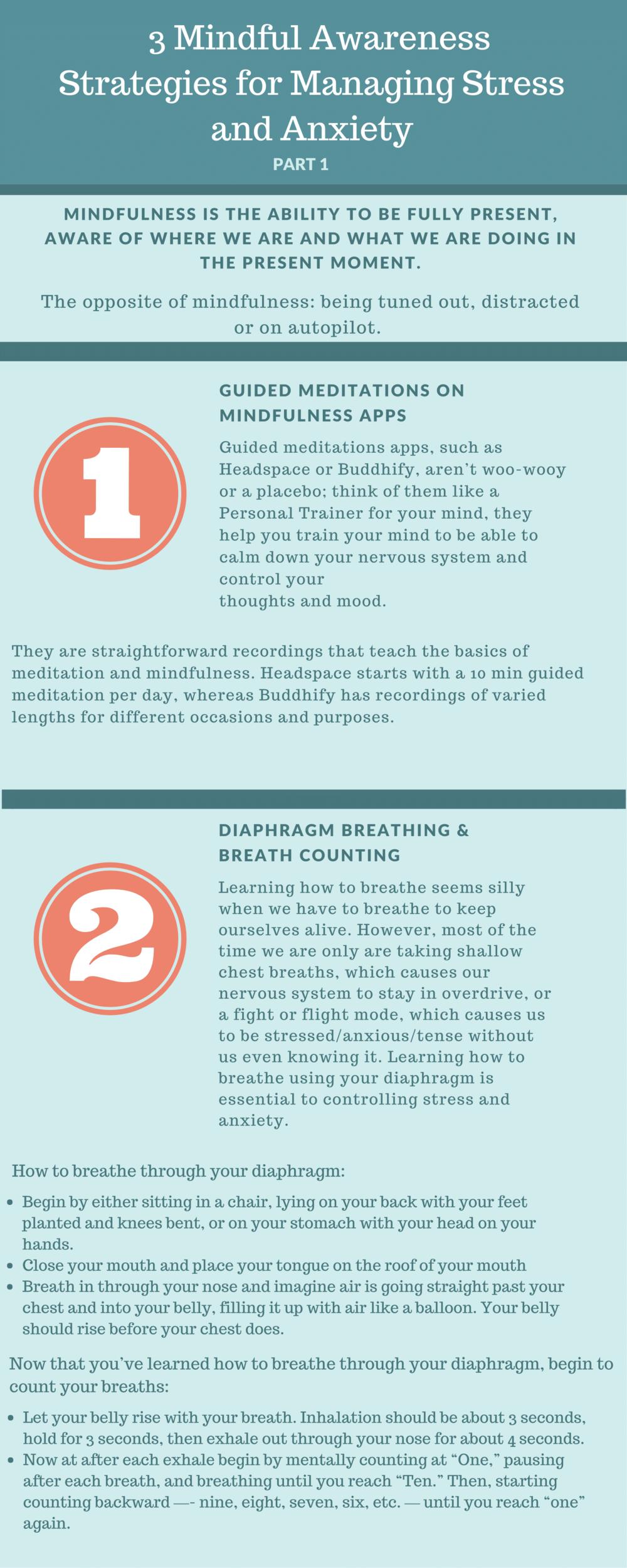 3 Mindful Awareness Strategies PDF-1.png