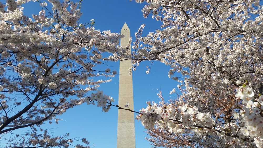 WashingtonMonumentDC