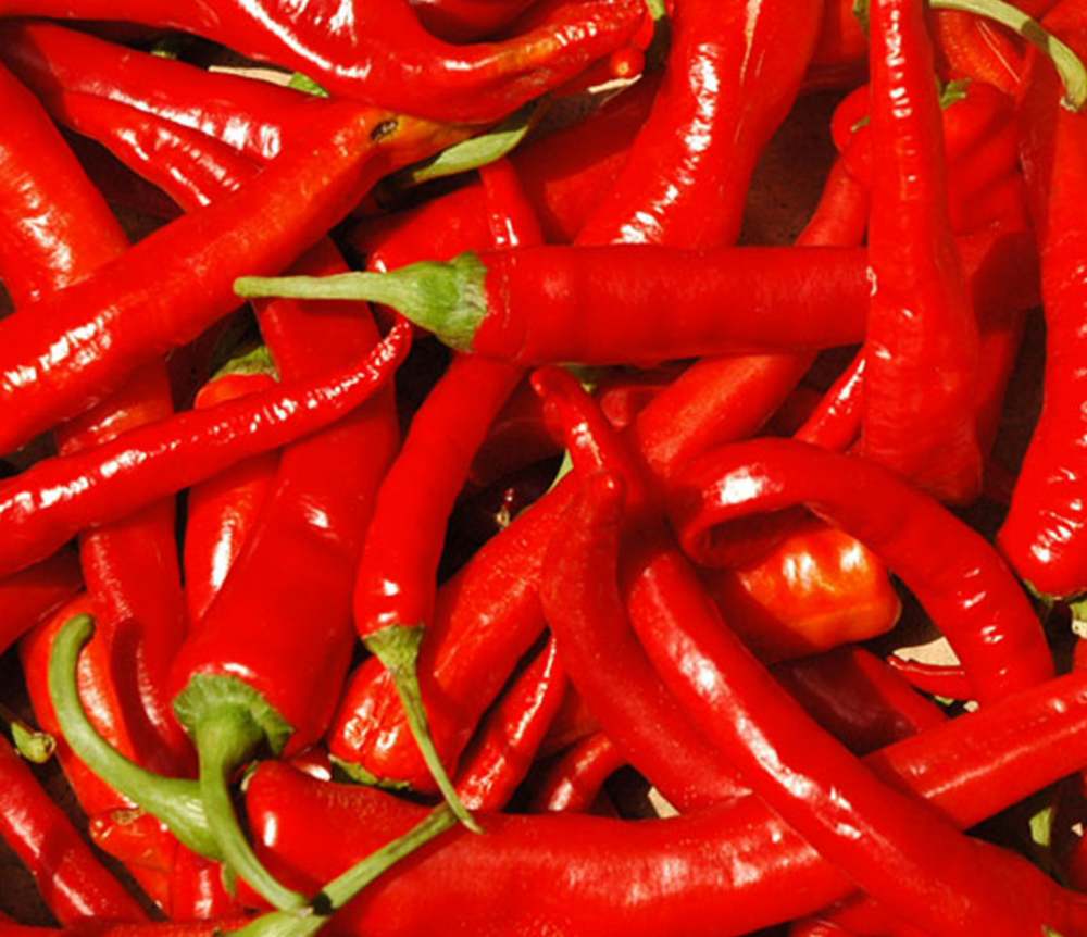 CALABRIAN PEPPERS (SPICY)