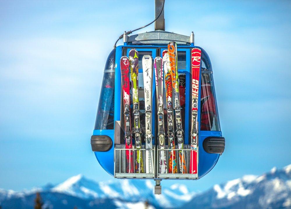 Skiing+Selma.jpeg