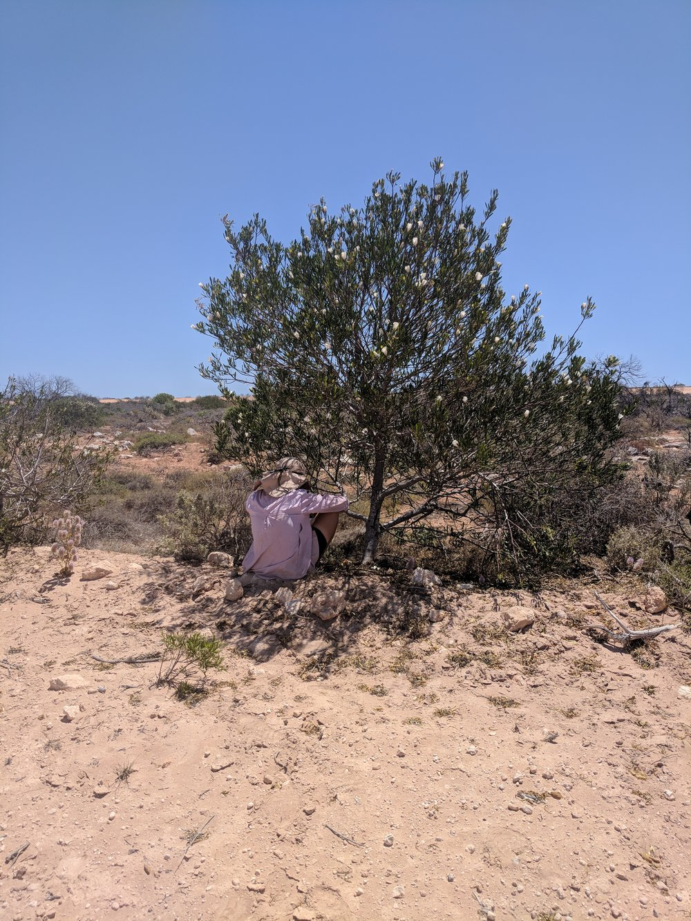 a particulary hot day with little shade means that whatever is around is used. Almost at Useless Loop