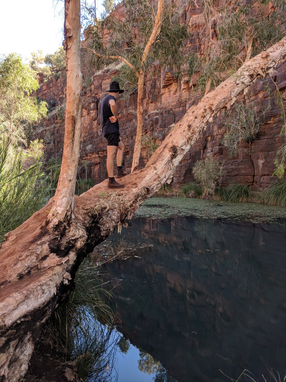 An image from the 'in-between' (Meekatharra - Darwin) - Karajini National Park. feat Owen in a hat