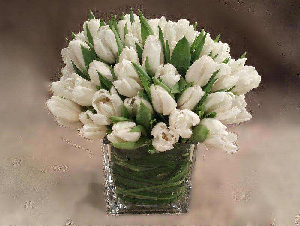 white tulips in square glass vase.jpg