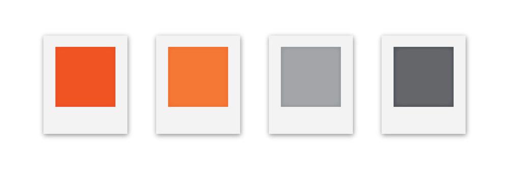SierraUS_Case-study-colors.jpg