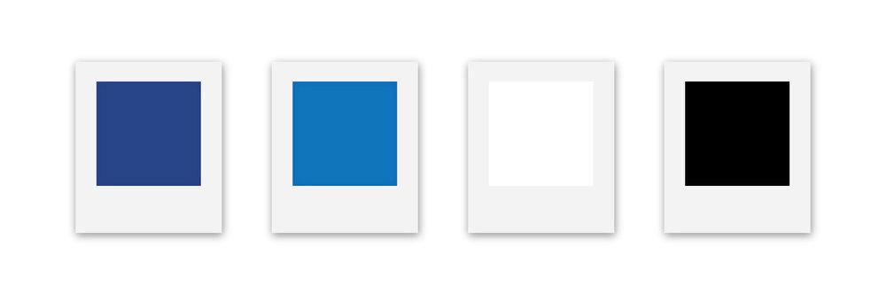 LWDV_Case-study-colors.jpg