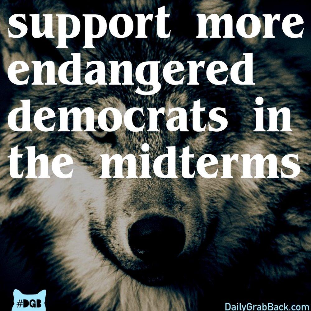 10-24EndangeredDemocrats copy.jpg