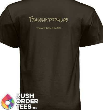 Shirt 2b.png