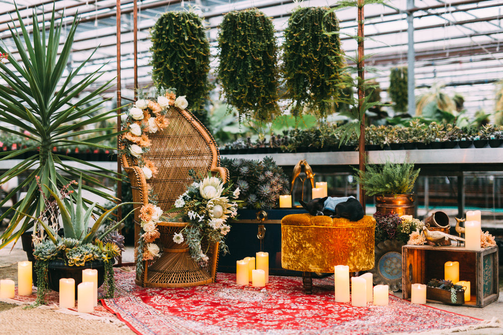 amanda cowley events niagara wedding planner free spirit styling bohemian style persian rugs eclectic greenhouse editorial