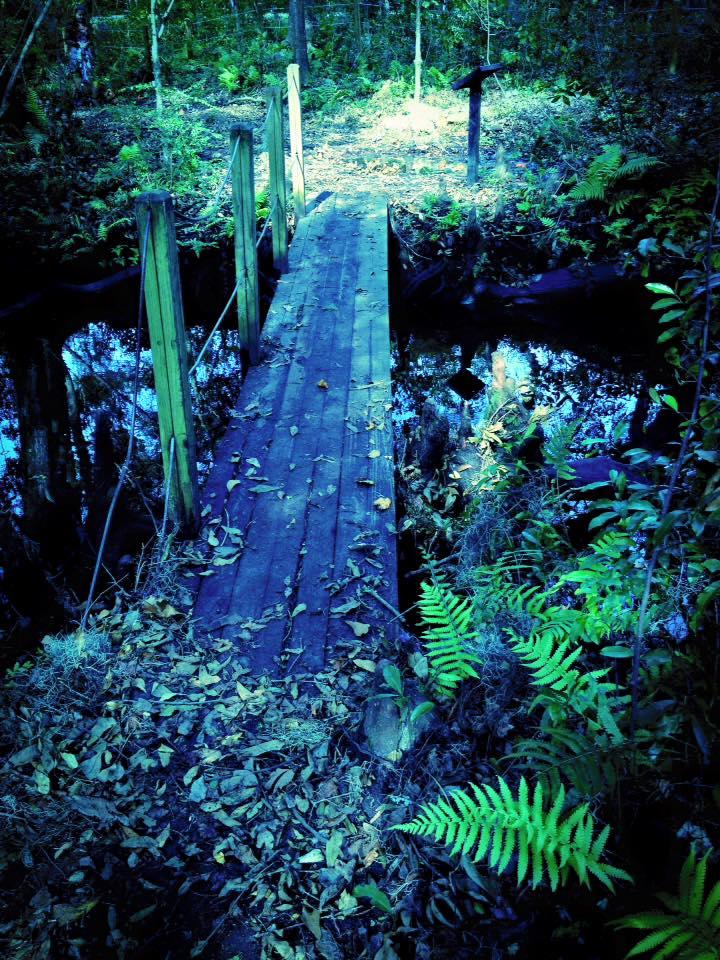 Bridge over dark waters