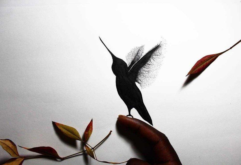 humming bird design.jpg