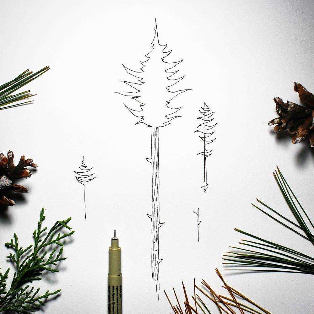 minimal tree designs.jpg