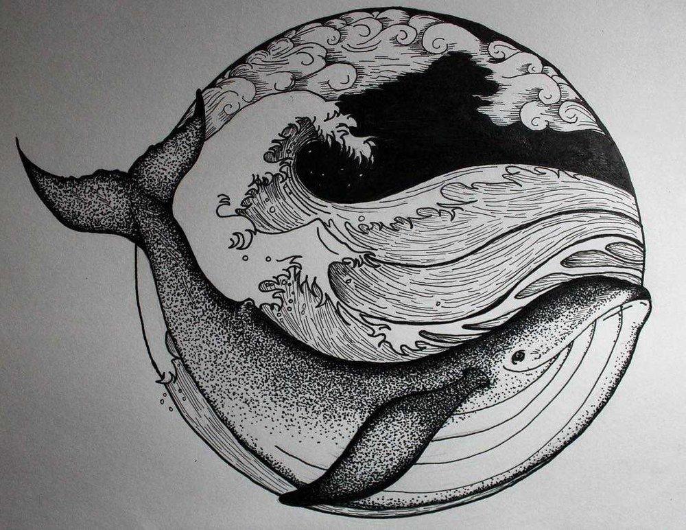 whale_converted.jpg