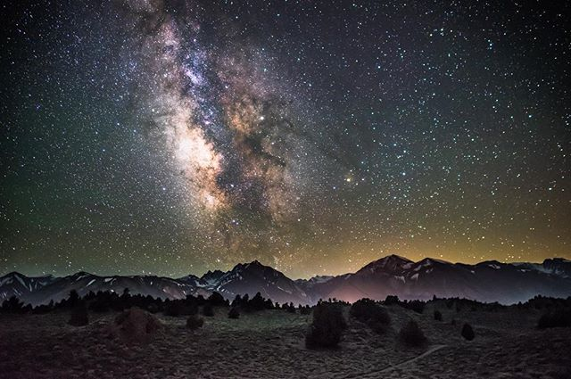The night sky holds mysteries and answers questions. Look up. #StrayTgthr  PC: @robsonhmorgan