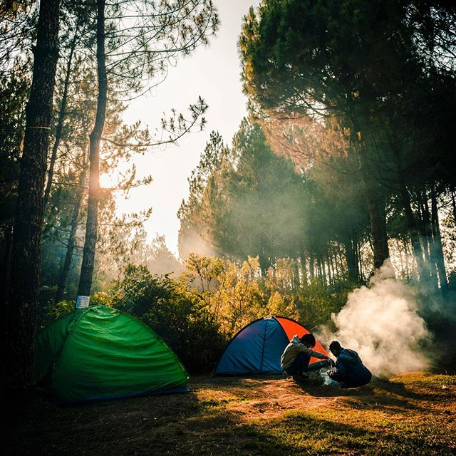 🏕🍂✌️ Vote for your favorite National Park in our previous post. #StrayTgthr  PC: Daniel Nainggilan
