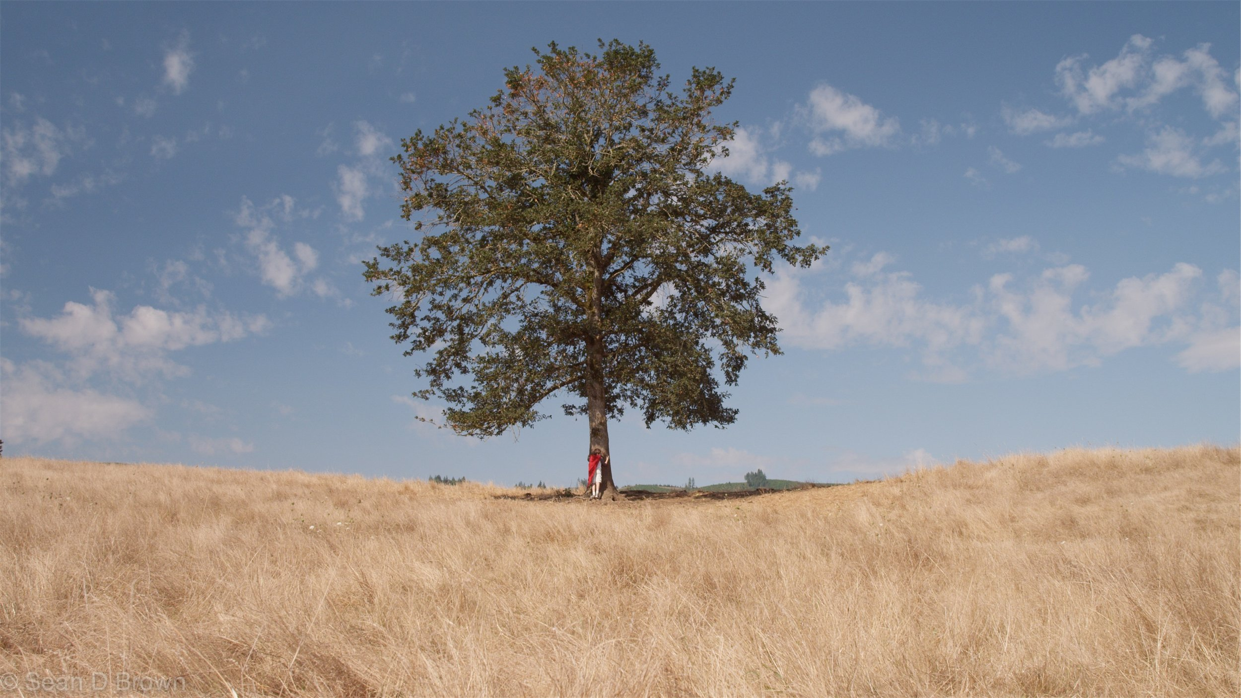 what was the tree of the knowledge of good and evil for knowing