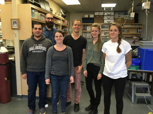 A few members of the Quinn group at Dalhousie. From left to right: Behzad Taeb, Matt Stoyek, Sara Rafferty, Alex Quinn, Breanne Cameron, Eilidh MacDonald