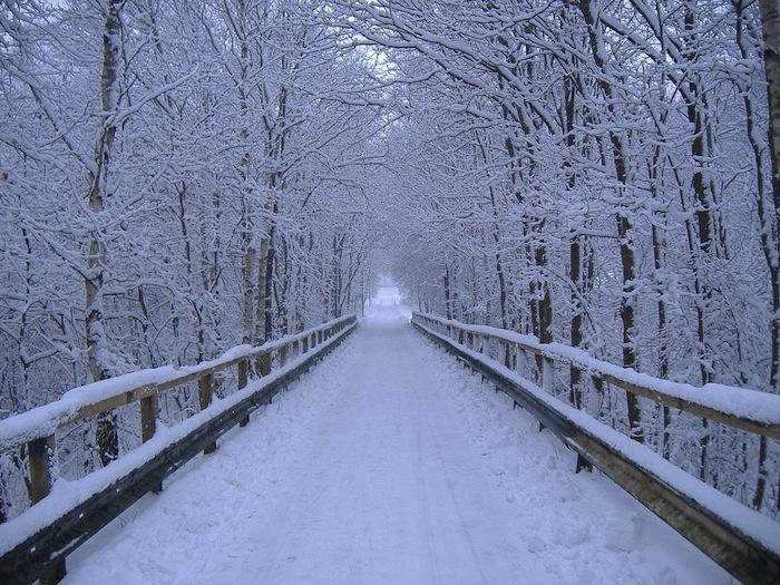 winter-wallpaper-backgrounds.jpg