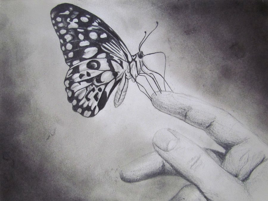butterfly_fly_away_by_sarickbanana-d3iiwwr